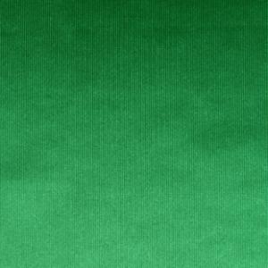 Rasete Foamizado Verde Billar