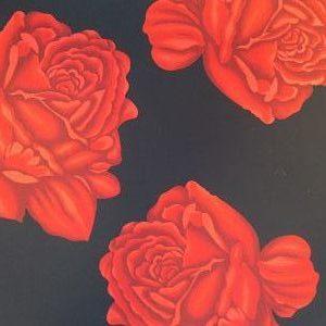 Crespón Rosas sobre Negro