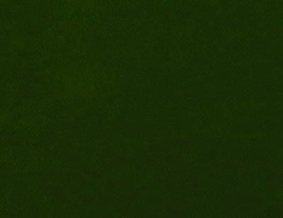 tela antelina verde oscuro